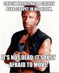 Top 50 Memes - 115 best epic memes images on pinterest funny stuff funny images