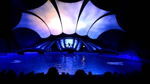 light show in atlanta dolphin show georgia aquarium youtube