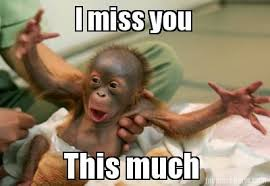 Baby Monkey Meme - image result for miss you meme memes pinterest meme texting