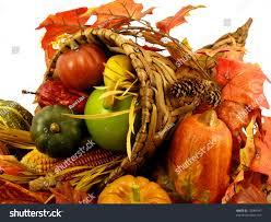 thanksgiving cornacopia cornucopia thanksgiving decoration horn plenty isolated stock