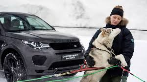 land rover snow husky race is snow problem for land rover discovery sport