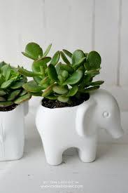 Succulent Planter Diy Toy Elephant Succulent Planter Make It And Love It