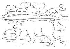 polar bear fun2draw polar bear drawings sketches