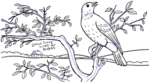 how to draw a bird in a tree in front of rolling landscape