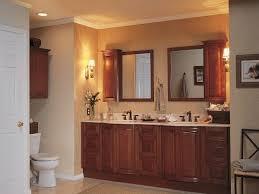 Brown Bathroom Colors - bathroom color schemes brown and blue home decor ryanmathates us