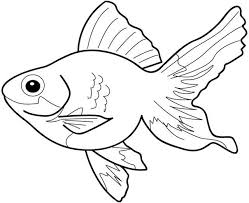 fish coloring pages 3 coloring kids