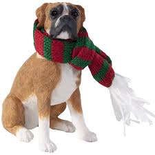 sandicast fawn boxer with and green scarf