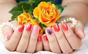 nail salons coupons u0026 deals near portland me localsaver