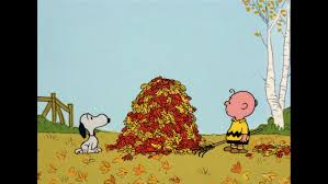 a charlie brown thanksgiving vhs it u0027s the great pumpkin charlie brown u2013 fun for the whole family