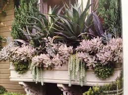 succulent window box dying outdoor living pinterest window