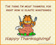 funny thanksgiving quotes pictures photos images and pics for
