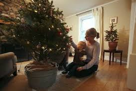 potted christmas tree bloomfield program takes residents potted christmas trees to