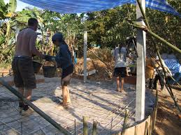 building a giant bird cage maggimck