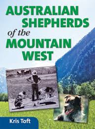 australian shepherd history australian shepherds of the mountain west rowe publishing