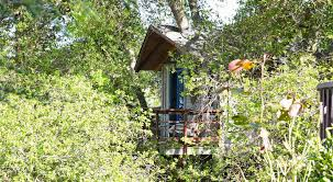 this playful airbnb treehouse near san francisco lets you sleep in