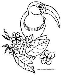 parrot coloring pages bird coloring pages timbres pour coloriages divers pinterest