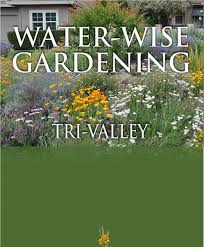 native drought tolerant plants ca bay area tri valley water wise gardening native plants