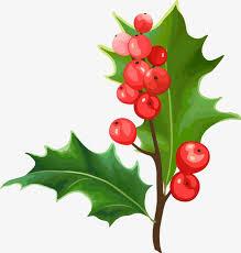 christmas plants christmas fruit leaf material creative christmas plants