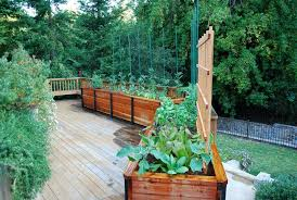 Wood For Raised Vegetable Garden by Deck Ideas Deck Traditional With Raised Beds Raised Bed Vegetable