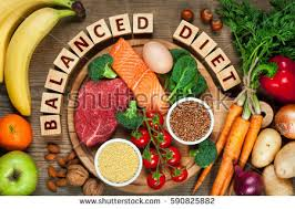 balanced diet stock images royalty free images u0026 vectors