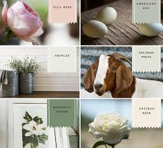 magnolia home by joanna gaines premium interior paints pretty