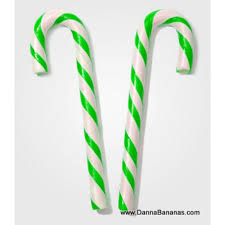where to buy pickle candy canes pickle candy canes