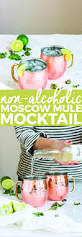 cocktail drinks recipe easy best 25 easy mocktail recipes ideas on pinterest easy lemonade