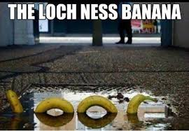 Loch Ness Monster Meme - monstrous memes image memes at relatably com