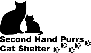 Second Hand by Adoption Information U2014 Second Hand Purrs
