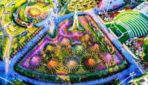 you will be pleased to see this dubai miracle garden garden