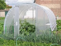 serre tunelle de jardin serre tunnel jardinière