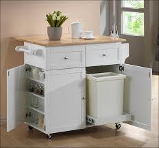 Kitchen Sliding Shelves by Kitchen Sliding Drawers For Pantry Pull Out Shelves For Kitchen
