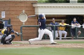 several u0027dogs excelling in summer league play samford university