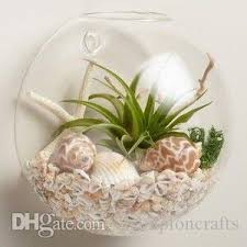 Goldfish Bowl Vase 6 Inch Wall Glass Goldfish Bowl Fighting Fish Tank Wall Glass