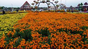 Best Public Gardens by Filedubai Miracle Garden Jpg Wikimedia Commons Idolza