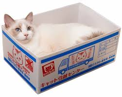 japan trend shop house moving box cat bed