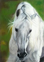 white mustang horse white horse by artiawolf on deviantart