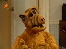 Alf Meme - create meme alf pictures meme arsenal com