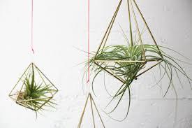 diy geometric air planters