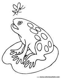 fat frog coloring sheet create a printout or activity