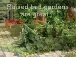 vegetable gardening vegtable garden plans vegetable garden