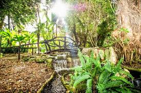 Botanical Gardens Wanneroo Gardens Picture Of Wanneroo Botanic Gardens Wanneroo Tripadvisor