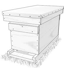 five frame vital stats and materials list for five frame nuc hive dummies