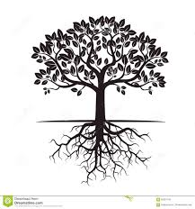 black tree and roots vector illustration stock illustration