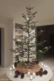 107 best christmas trees pacific northwest style images on