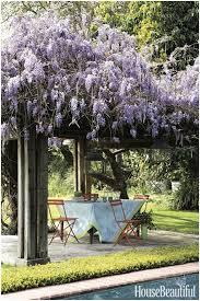 backyards trendy 50 beautiful landscaping ideas best backyard