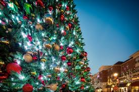 spectacular musical tree shows at leesburg