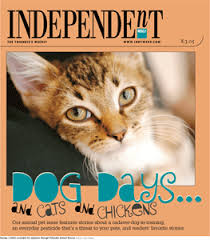 Bed Bugs On Cats Poisoning Our Pets Dog Days Of Summer Indy Week