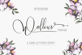 100 beautiful script brush u0026 calligraphy fonts reversible