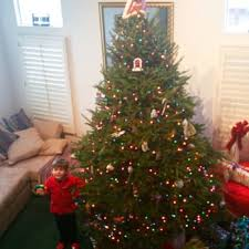 9 foot christmas tree green valley christmas trees 15 photos 50 reviews christmas